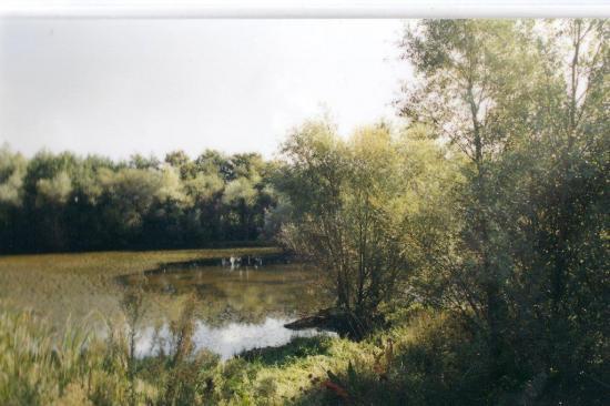 Le plan d'eau en septembre 2001