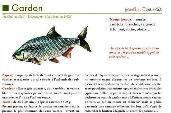 Desc_Gardon.jpg